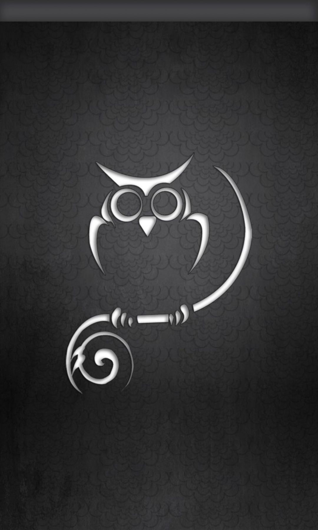 40 Black And White Owl Android Iphone Desktop Hd Backgrounds Wallpapers 1080p 4k 1080x1800 2020