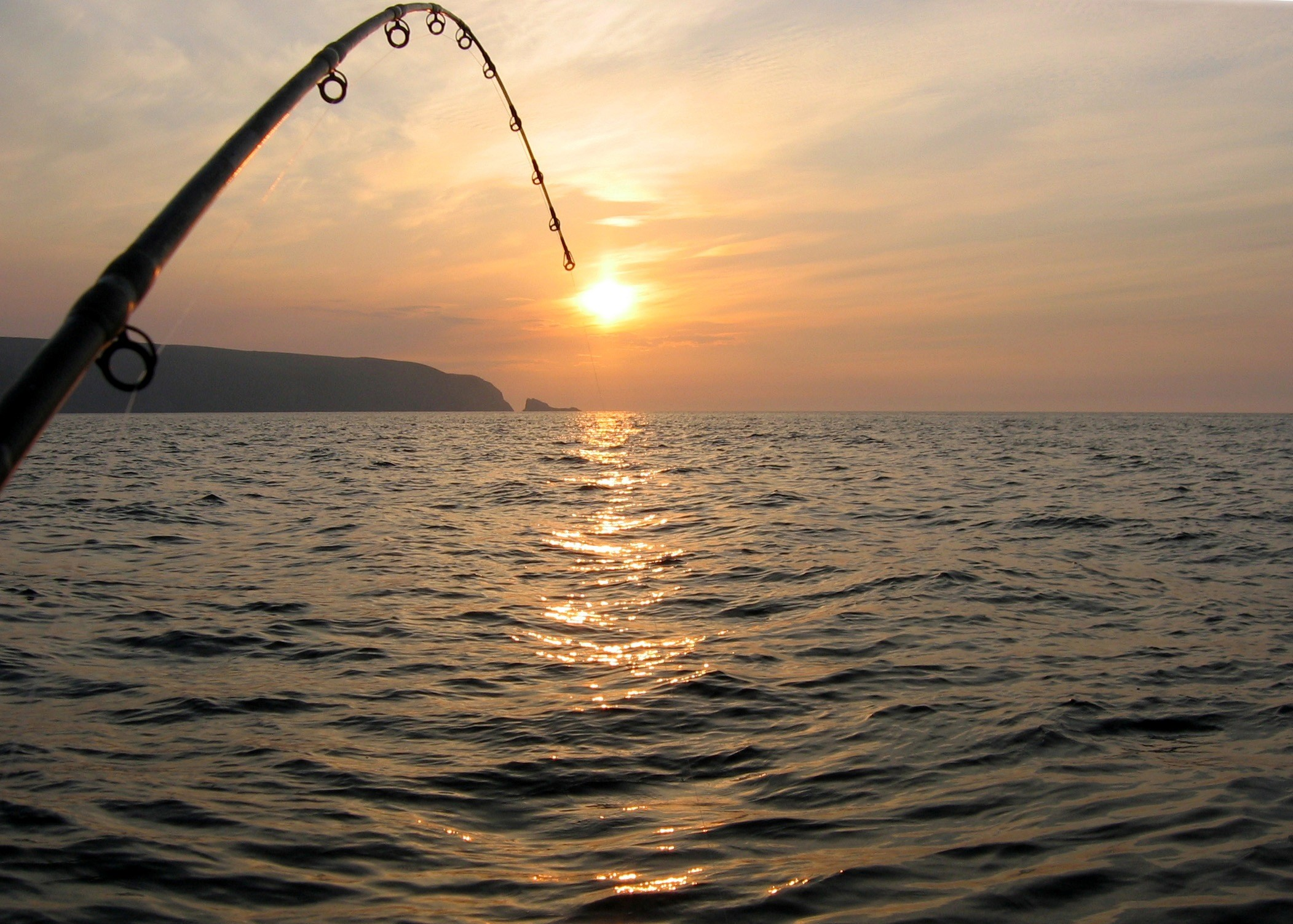 55 Saltwater Fishing Android Iphone Desktop Hd Backgrounds Wallpapers 1080p 4k 2103x1503 2020
