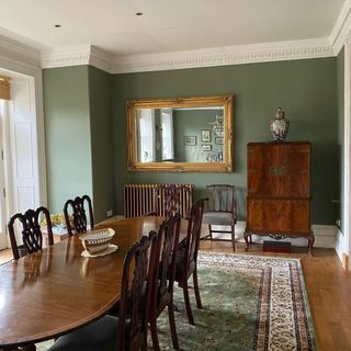 Green Dining Room Design / Decoration (#61102)