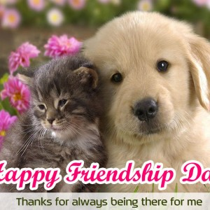 *Best* Friendship Day [August 5, 2018] Wishes HD Images & Wallpapers for WhatsApp DP - #5751