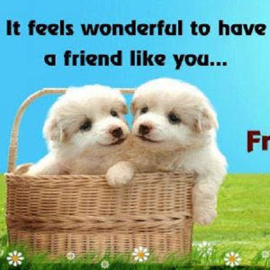 *Best* Happy Friendship Day 2018 [5th August] - HD Images, Quotes, Wallpapers - #5988