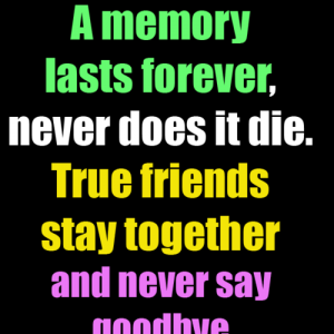 Best Happy Friendship Day [4th August 2019] Quotes, Wishes - #4113