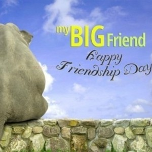 Happy Friendship Day [2018] - WhatsApp DP, Quotes, Messages - #3981