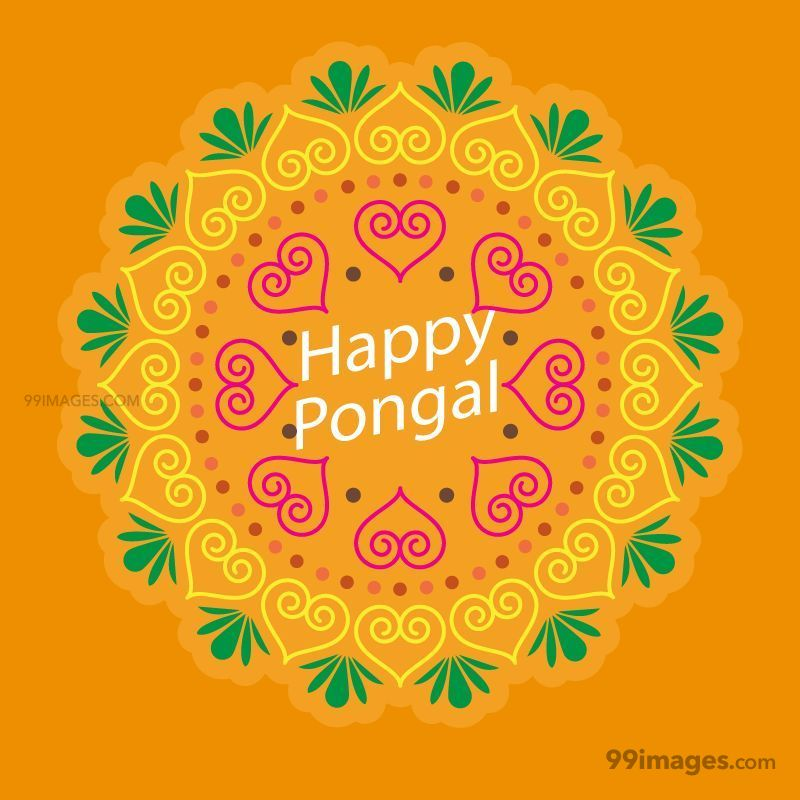 [14th January 2021] Happy Pongal (Pongal Vazhthukkal) WhatsApp DP Images, Wishes, Quotes, Messages HD (148101) - Pongal