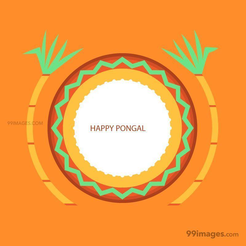 [15th January 2020] Happy Pongal (Pongal Vazhthukkal) WhatsApp DP Images, Wishes, Quotes, Messages HD (148135) - Pongal