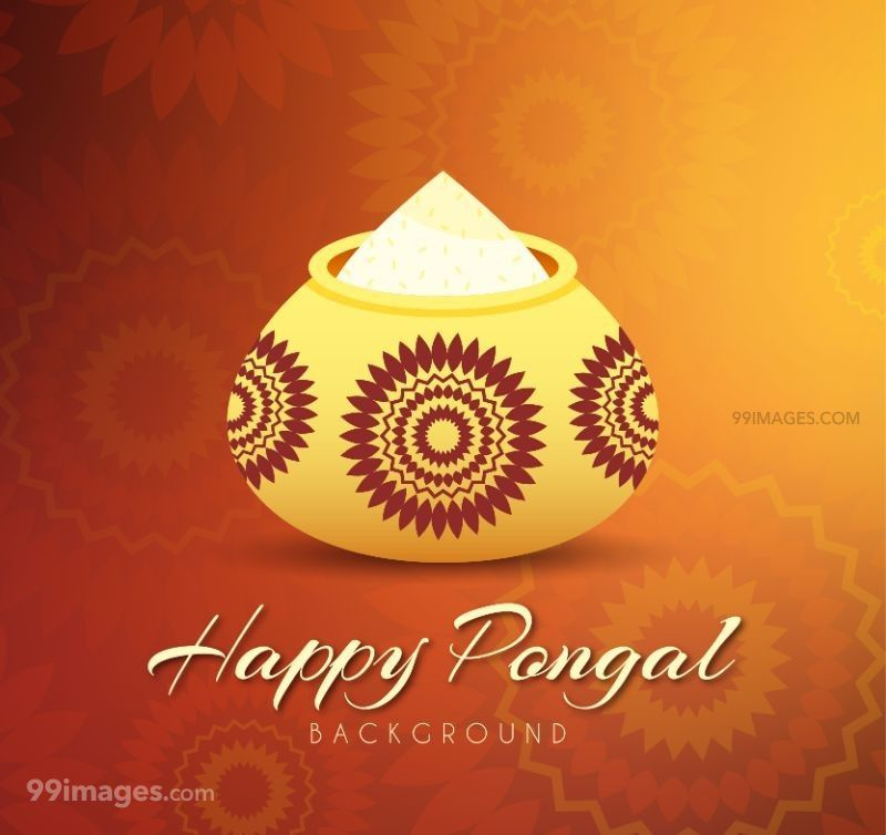 [15th January 2020] Happy Pongal (Pongal Vazhthukkal) WhatsApp DP Images, Wishes, Quotes, Messages HD (148128) - Pongal