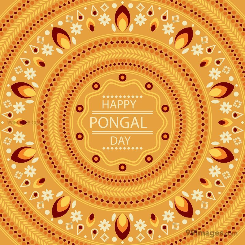 [15th January 2020] Happy Pongal (Pongal Vazhthukkal) WhatsApp DP Images, Wishes, Quotes, Messages HD (148132) - Pongal