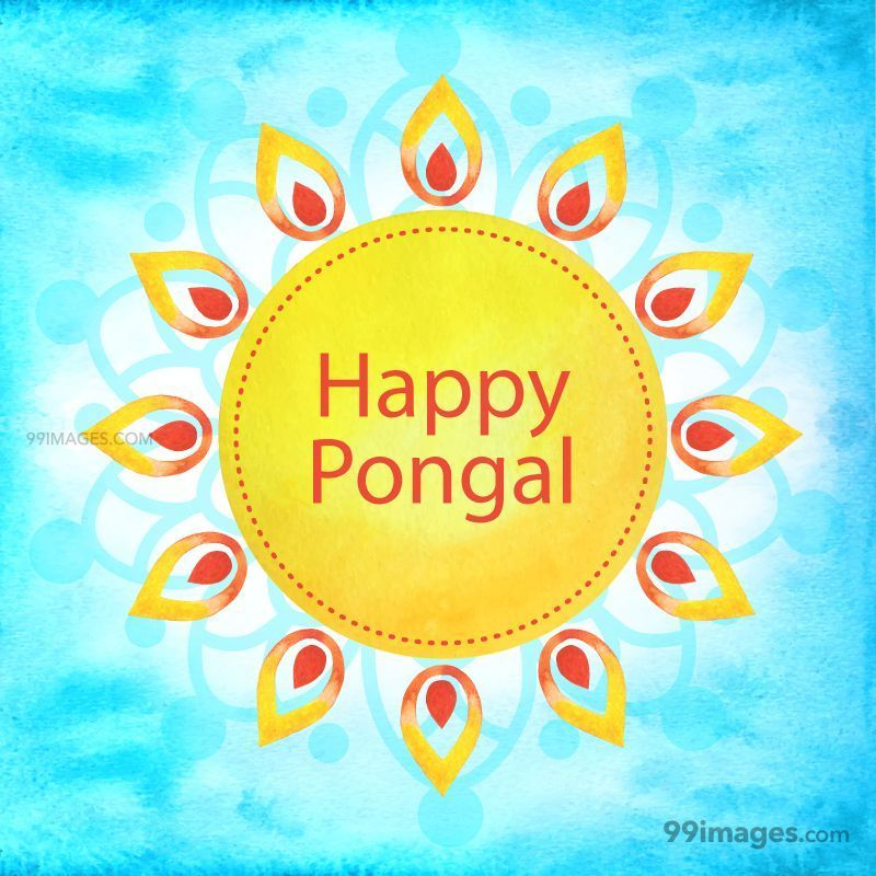 [15th January 2020] Happy Pongal (Pongal Vazhthukkal) WhatsApp DP Images, Wishes, Quotes, Messages HD (148076) - Pongal