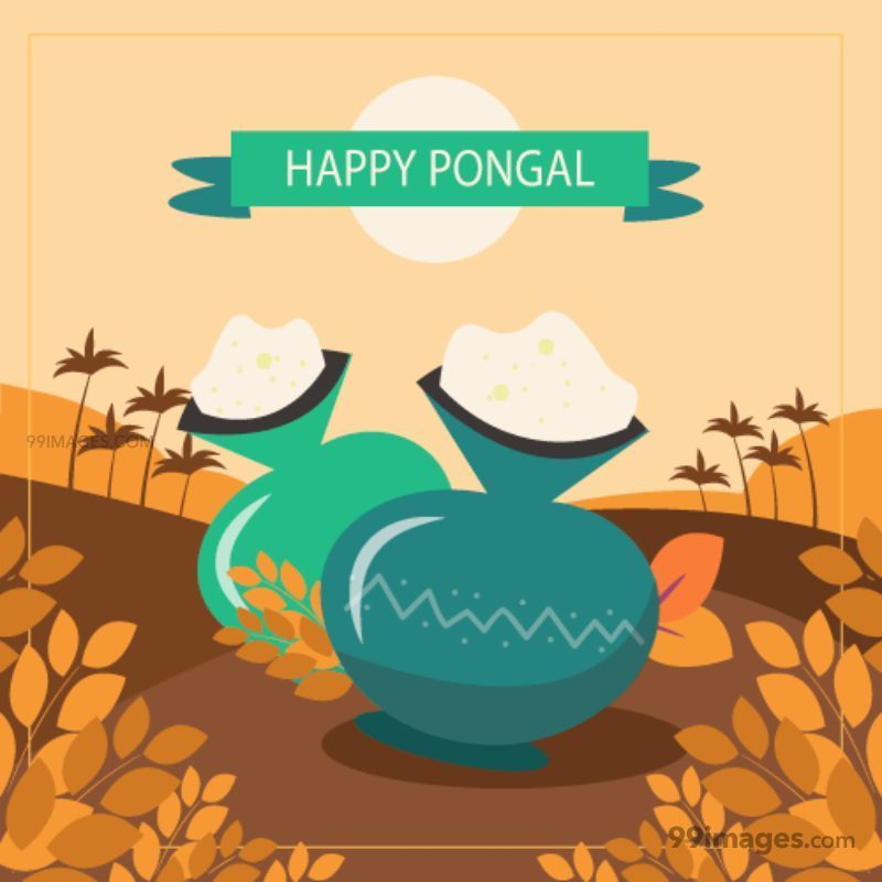 [15th January 2020] Happy Pongal (Pongal Vazhthukkal) WhatsApp DP Images, Wishes, Quotes, Messages HD (148124) - Pongal