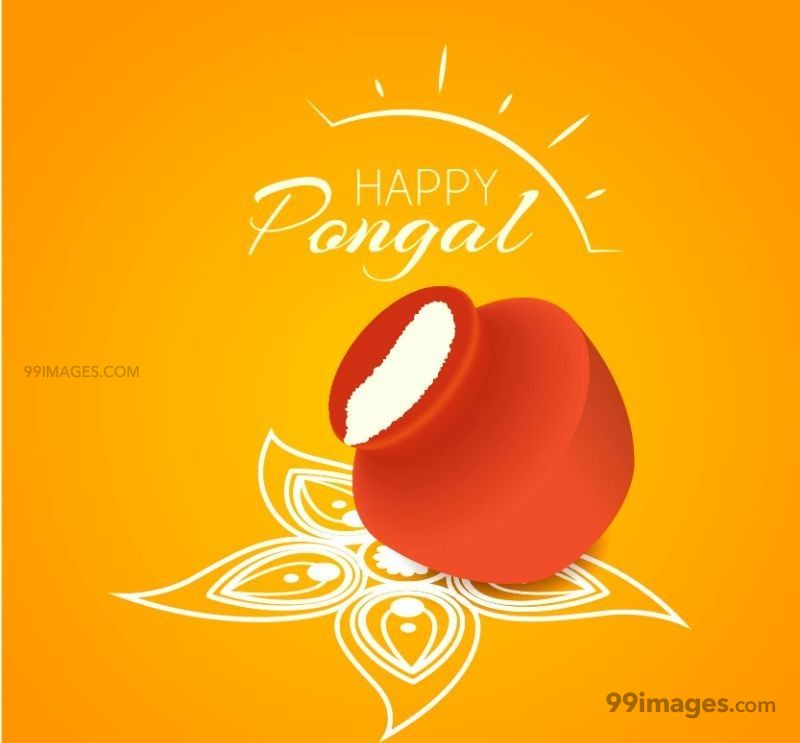 [15th January 2020] Happy Pongal (Pongal Vazhthukkal) WhatsApp DP Images, Wishes, Quotes, Messages HD (148086) - Pongal