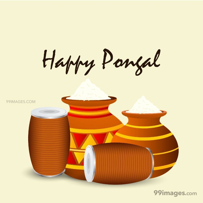 [15th January 2020] Happy Pongal (Pongal Vazhthukkal) WhatsApp DP Images, Wishes, Quotes, Messages HD (148023) - Pongal