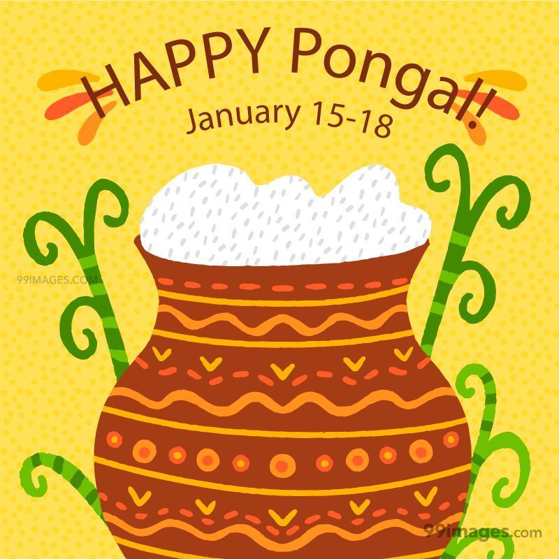 [15th January 2020] Happy Pongal (Pongal Vazhthukkal) WhatsApp DP Images, Wishes, Quotes, Messages HD (148169) - Pongal