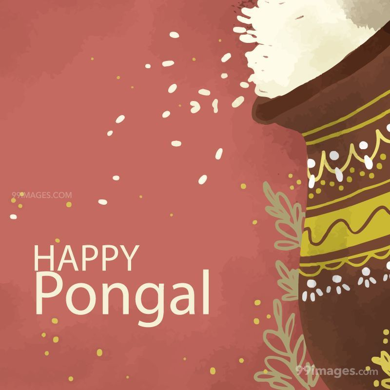 [15th January 2020] Happy Pongal (Pongal Vazhthukkal) WhatsApp DP Images, Wishes, Quotes, Messages HD (148146) - Pongal