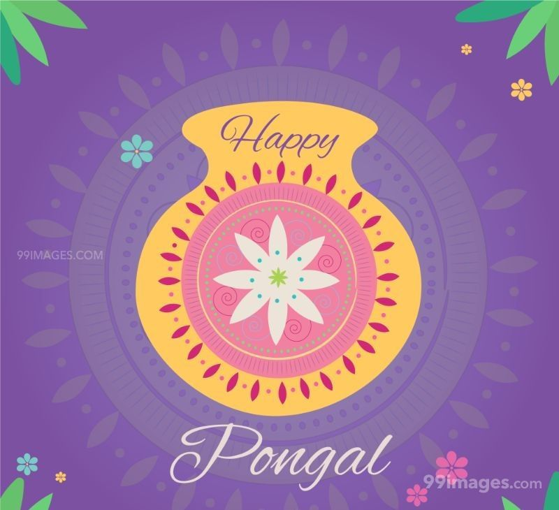[15th January 2020] Happy Pongal (Pongal Vazhthukkal) WhatsApp DP Images, Wishes, Quotes, Messages HD (148175) - Pongal