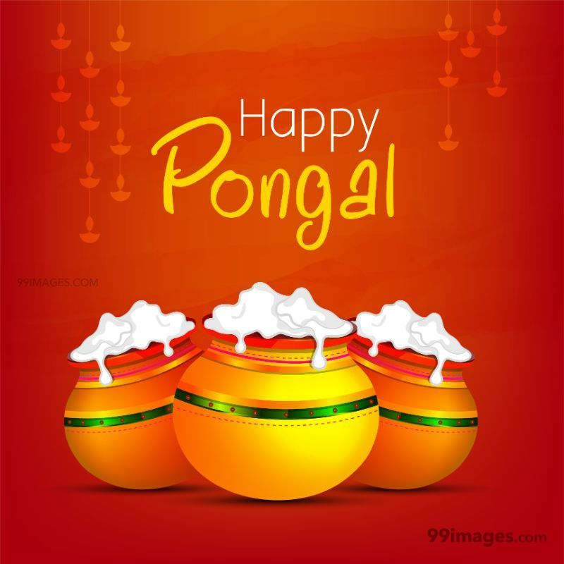 [15th January 2020] Happy Pongal (Pongal Vazhthukkal) WhatsApp DP Images, Wishes, Quotes, Messages HD (148003) - Pongal
