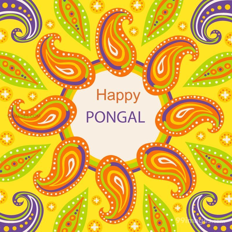 [15th January 2020] Happy Pongal (Pongal Vazhthukkal) WhatsApp DP Images, Wishes, Quotes, Messages HD (148184) - Pongal