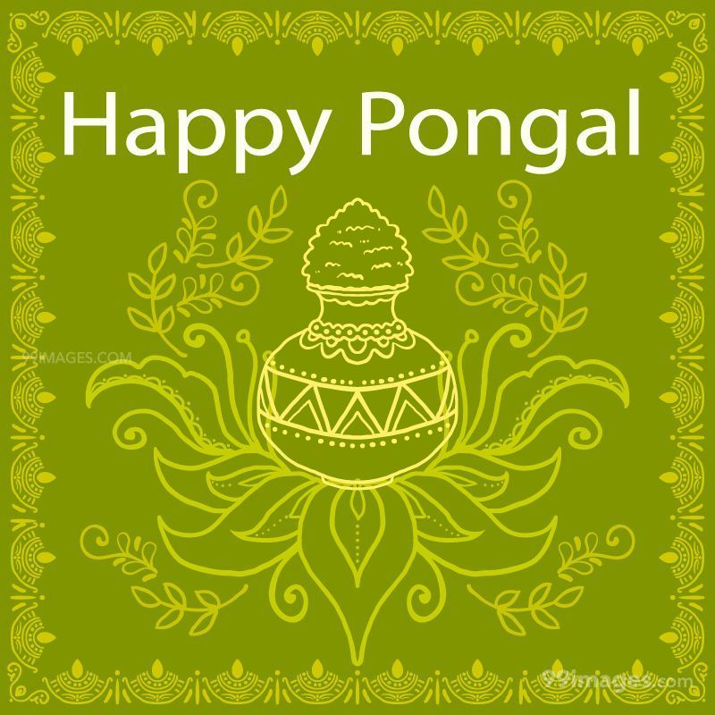 [15th January 2020] Happy Pongal (Pongal Vazhthukkal) WhatsApp DP Images, Wishes, Quotes, Messages HD (148052) - Pongal