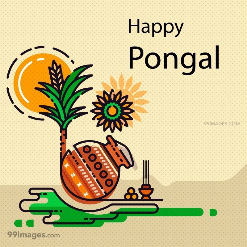 [15th January 2020] Happy Pongal (Pongal Vazhthukkal) WhatsApp DP Images, Wishes, Quotes, Messages HD (148102) - Pongal