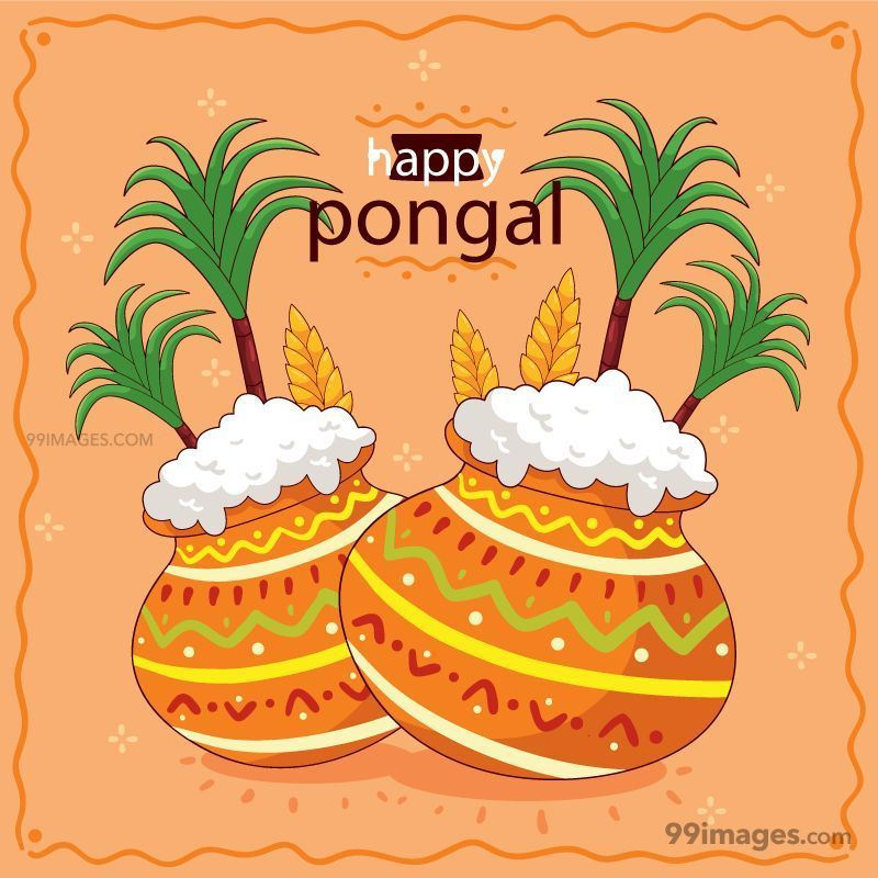 [15th January 2020] Happy Pongal (Pongal Vazhthukkal) WhatsApp DP Images, Wishes, Quotes, Messages HD (148158) - Pongal