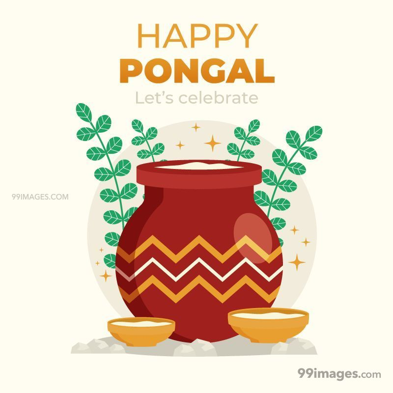 [15th January 2020] Happy Pongal (Pongal Vazhthukkal) WhatsApp DP Images, Wishes, Quotes, Messages HD (148186) - Pongal