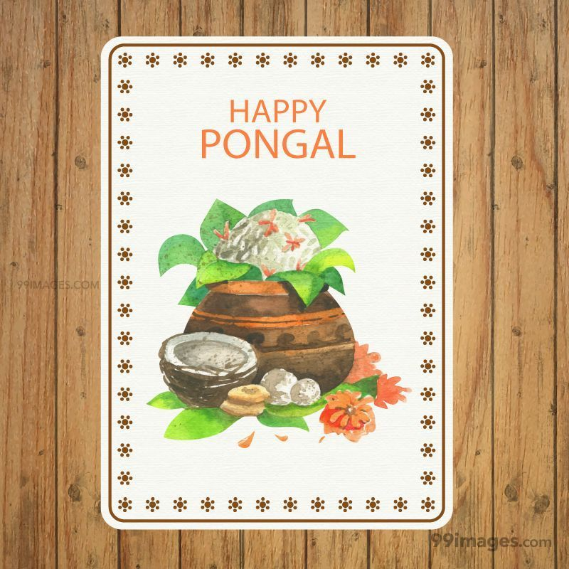 [15th January 2020] Happy Pongal (Pongal Vazhthukkal) WhatsApp DP Images, Wishes, Quotes, Messages HD (147978) - Pongal