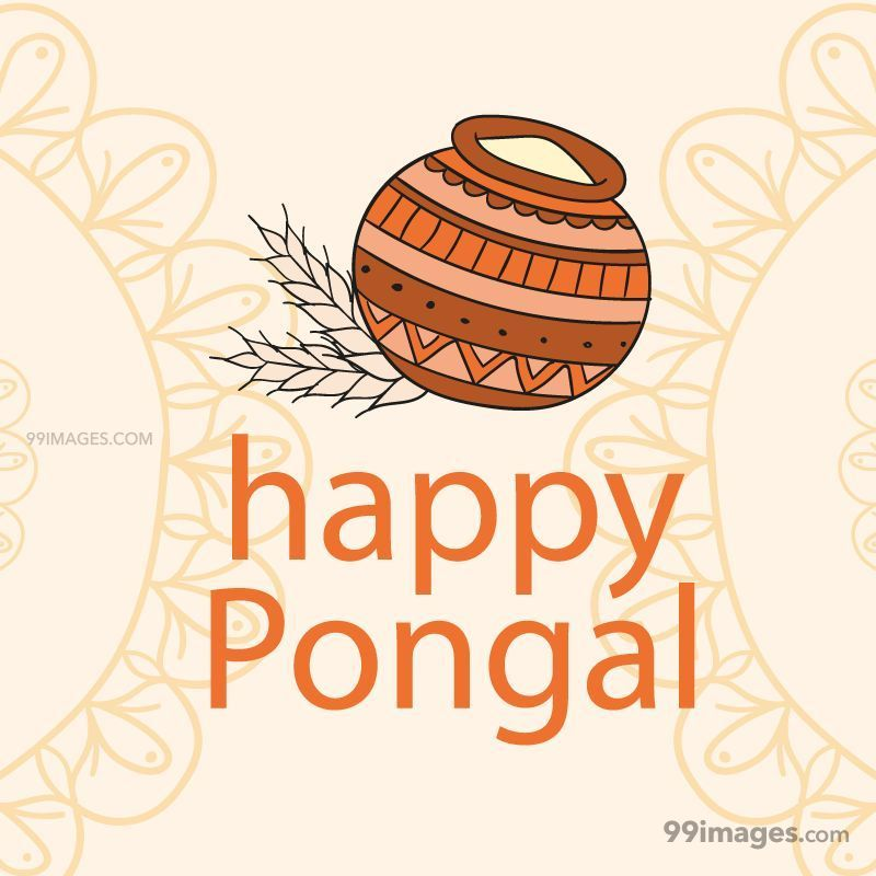 [15th January 2020] Happy Pongal (Pongal Vazhthukkal) WhatsApp DP Images, Wishes, Quotes, Messages HD (147995) - Pongal