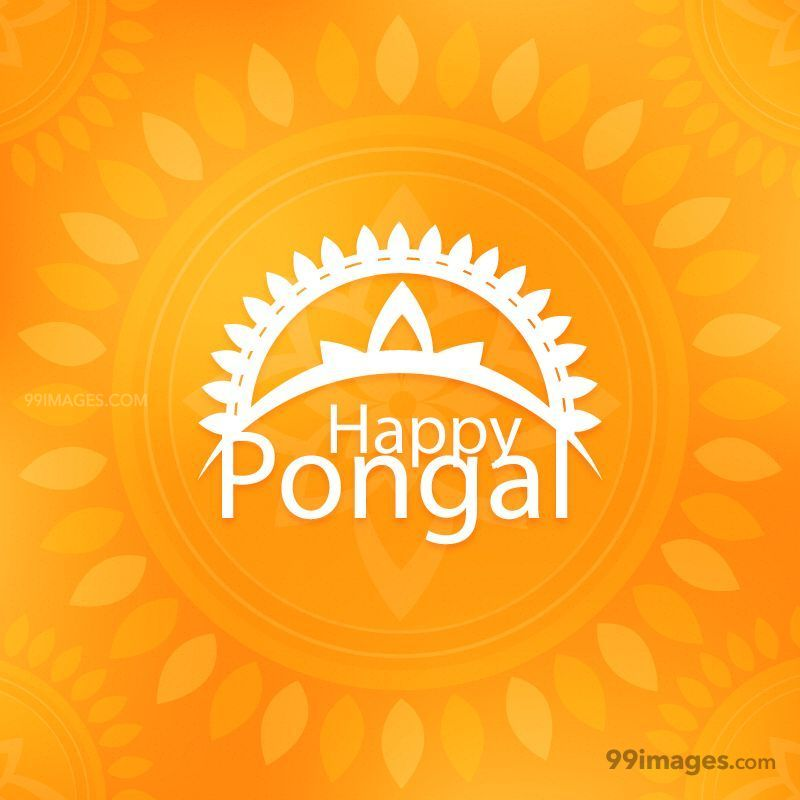 [14th January 2021] Happy Pongal (Pongal Vazhthukkal) WhatsApp DP Images, Wishes, Quotes, Messages HD (148048) - Pongal
