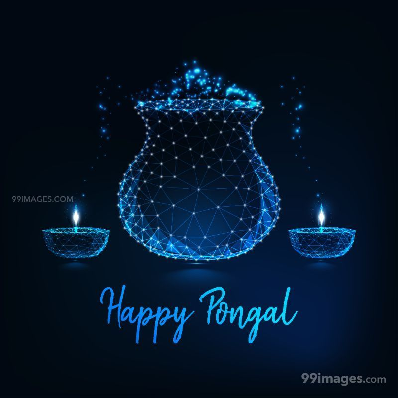[15th January 2020] Happy Pongal (Pongal Vazhthukkal) WhatsApp DP Images, Wishes, Quotes, Messages HD (148004) - Pongal