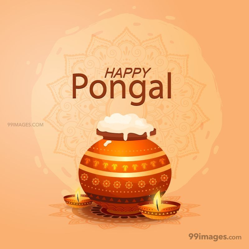 [15th January 2020] Happy Pongal (Pongal Vazhthukkal) WhatsApp DP Images, Wishes, Quotes, Messages HD (148164) - Pongal