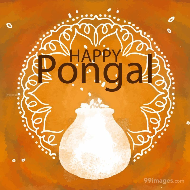 [15th January 2020] Happy Pongal (Pongal Vazhthukkal) WhatsApp DP Images, Wishes, Quotes, Messages HD (148147) - Pongal