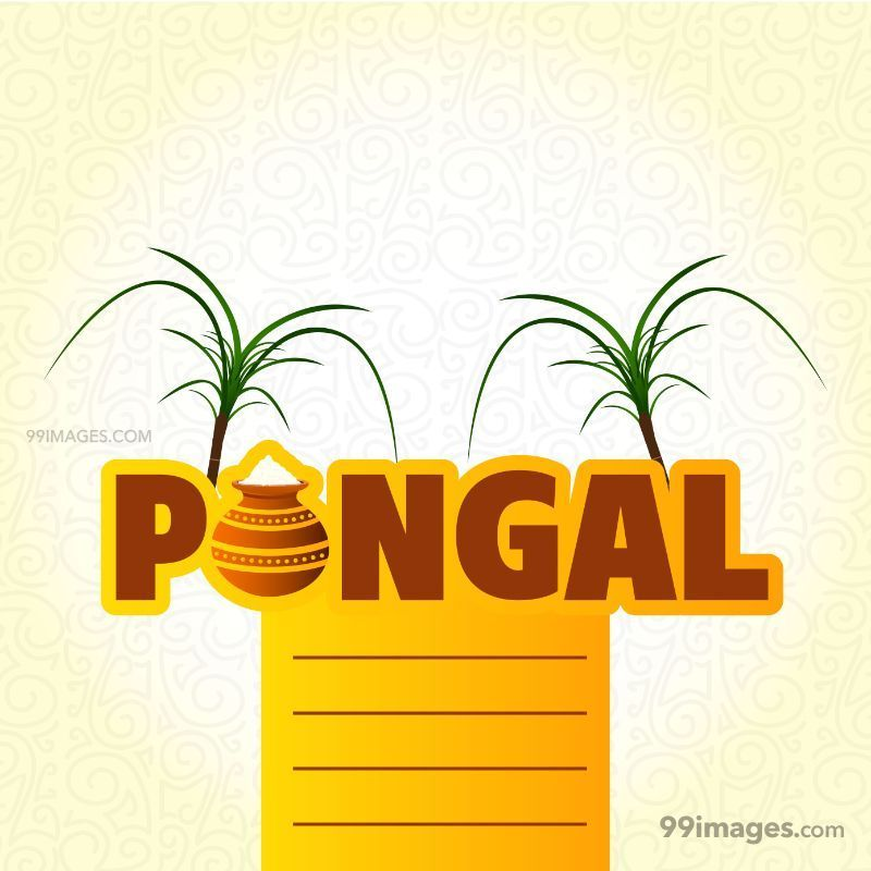 [15th January 2020] Happy Pongal (Pongal Vazhthukkal) WhatsApp DP Images, Wishes, Quotes, Messages HD (148017) - Pongal