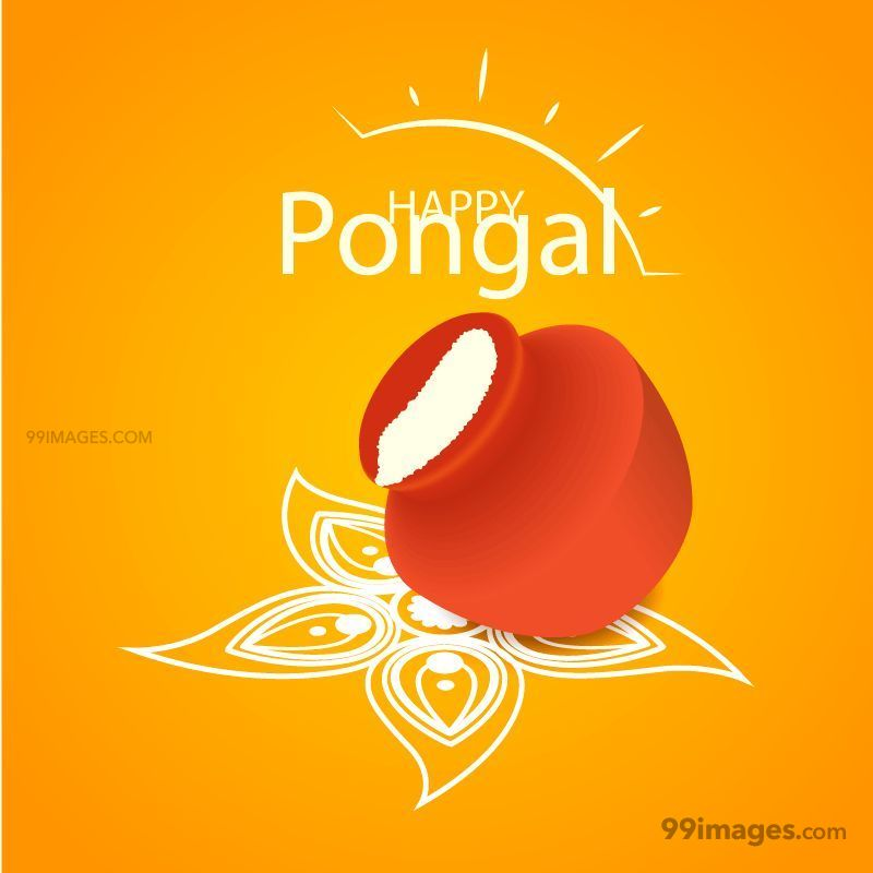 [15th January 2020] Happy Pongal (Pongal Vazhthukkal) WhatsApp DP Images, Wishes, Quotes, Messages HD (148085) - Pongal