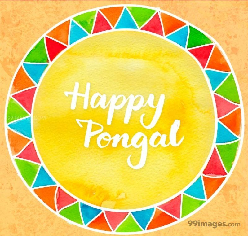 [15th January 2020] Happy Pongal (Pongal Vazhthukkal) WhatsApp DP Images, Wishes, Quotes, Messages HD (148078) - Pongal