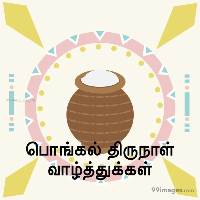 [14th January 2021] Happy Pongal (Pongal Vazhthukkal) in Tamil, WhatsApp DP Images, Wishes, Quotes, Messages HD (282364) - Pongal