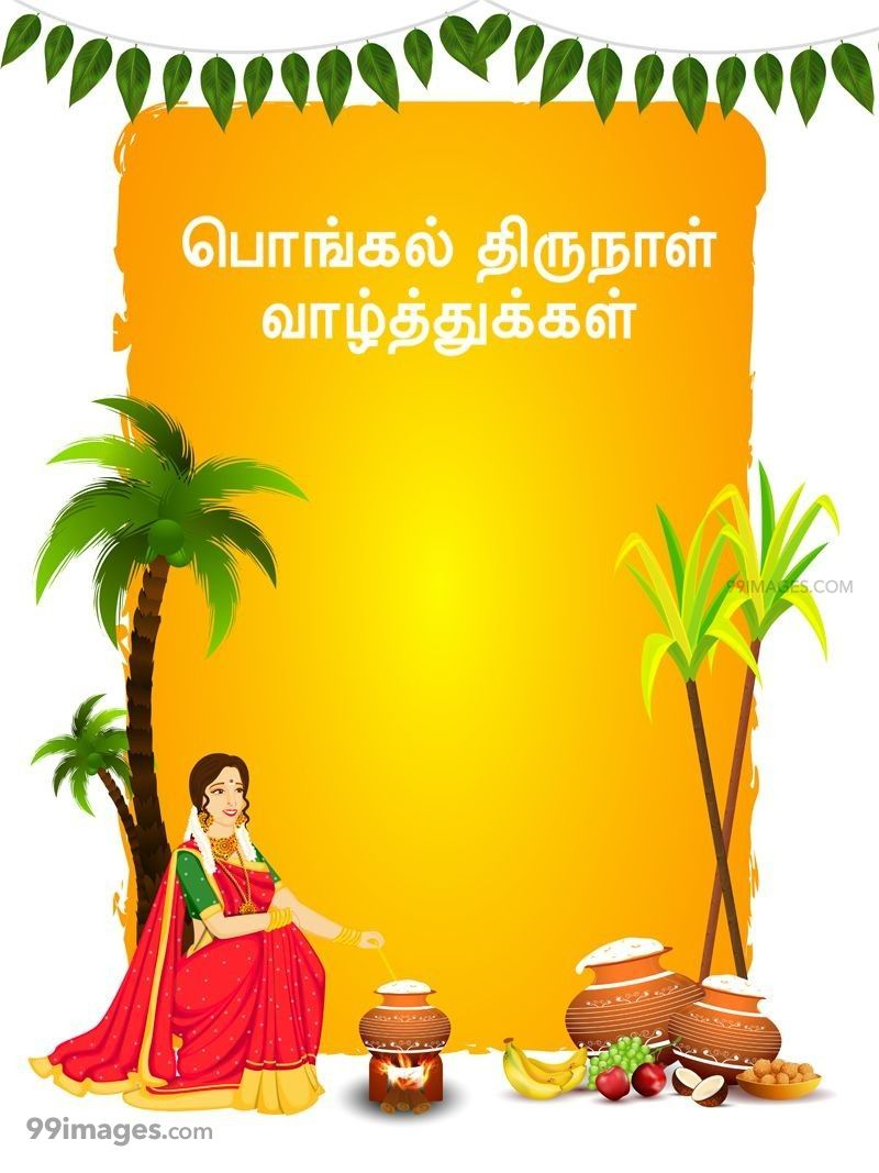 [14th January 2021] Happy Pongal (Pongal Vazhthukkal) in Tamil, WhatsApp DP Images, Wishes, Quotes, Messages HD (283379) - Pongal
