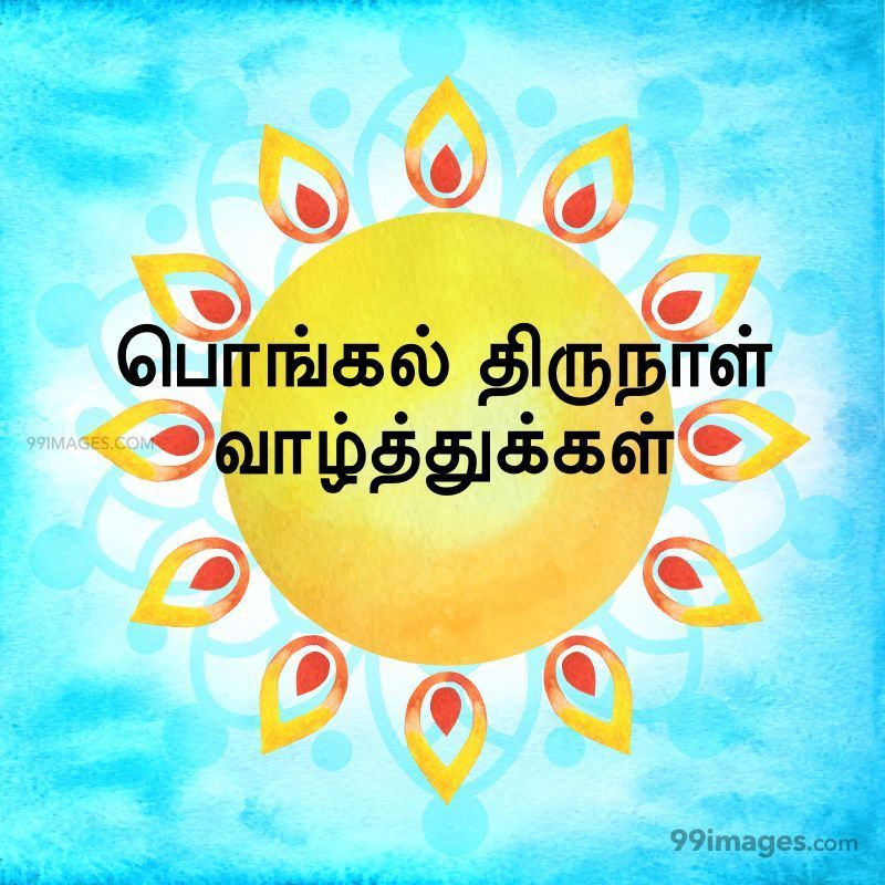 [14th January 2021] Happy Pongal (Pongal Vazhthukkal) in Tamil, WhatsApp DP Images, Wishes, Quotes, Messages HD (282237) - Pongal