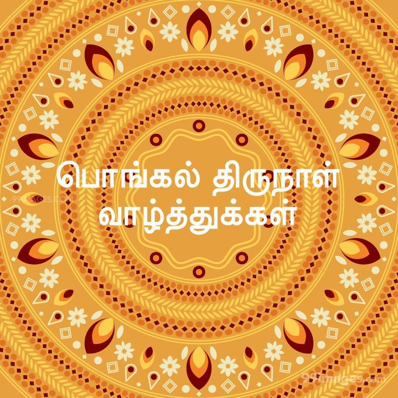 [14th January 2021] Happy Pongal (Pongal Vazhthukkal) in Tamil, WhatsApp DP Images, Wishes, Quotes, Messages HD (282371) - Pongal