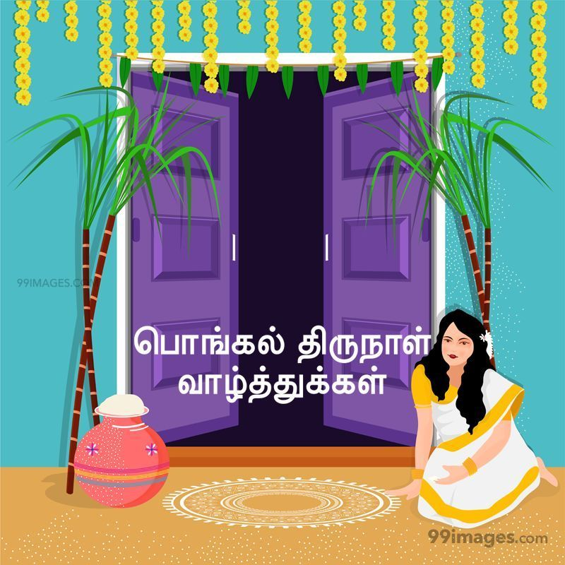 [14th January 2021] Happy Pongal (Pongal Vazhthukkal) in Tamil, WhatsApp DP Images, Wishes, Quotes, Messages HD (283391) - Pongal