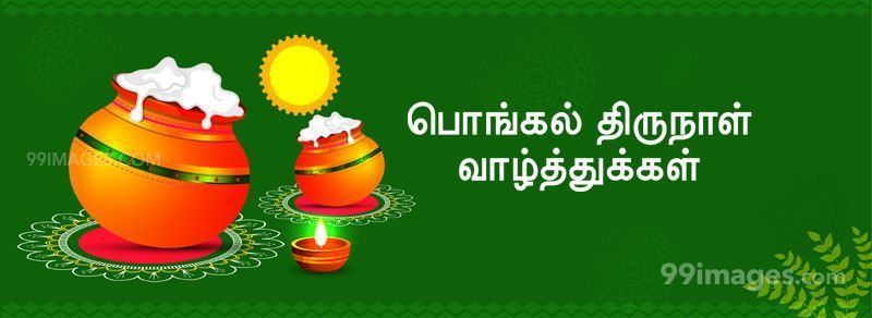 [14th January 2021] Happy Pongal (Pongal Vazhthukkal) in Tamil, WhatsApp DP Images, Wishes, Quotes, Messages HD (283385) - Pongal