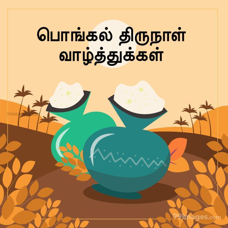 [14th January 2021] Happy Pongal (Pongal Vazhthukkal) in Tamil, WhatsApp DP Images, Wishes, Quotes, Messages HD (282397) - Pongal