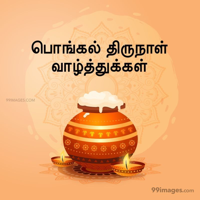 [15th January 2020] Happy Pongal (Pongal Vazhthukkal) in Tamil, WhatsApp DP Images, Wishes, Quotes, Messages HD (282414) - Pongal