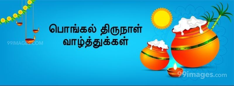 [15th January 2020] Happy Pongal (Pongal Vazhthukkal) in Tamil, WhatsApp DP Images, Wishes, Quotes, Messages HD (283387) - Pongal