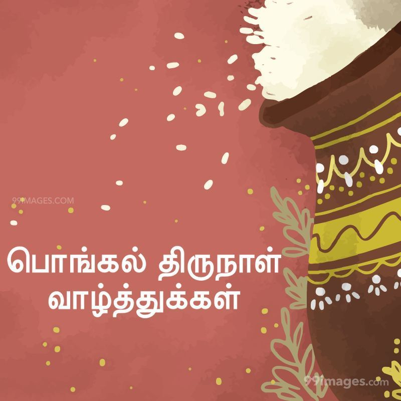 [14th January 2021] Happy Pongal (Pongal Vazhthukkal) in Tamil, WhatsApp DP Images, Wishes, Quotes, Messages HD (282355) - Pongal