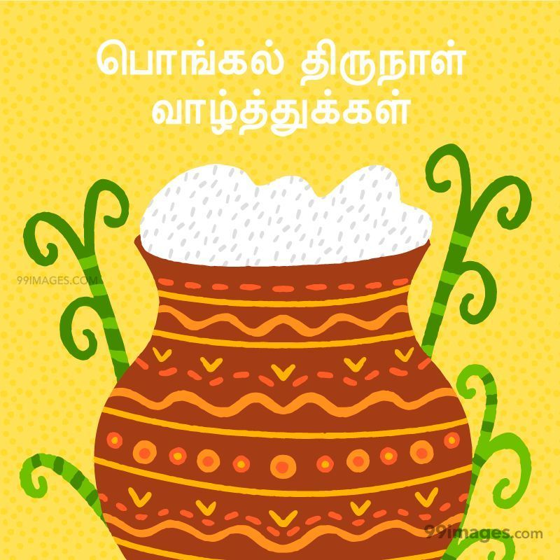 [15th January 2020] Happy Pongal (Pongal Vazhthukkal) in Tamil, WhatsApp DP Images, Wishes, Quotes, Messages HD (282403) - Pongal