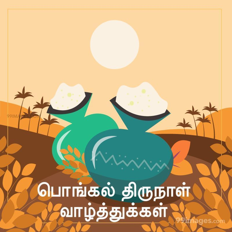[14th January 2021] Happy Pongal (Pongal Vazhthukkal) in Tamil, WhatsApp DP Images, Wishes, Quotes, Messages HD (282404) - Pongal