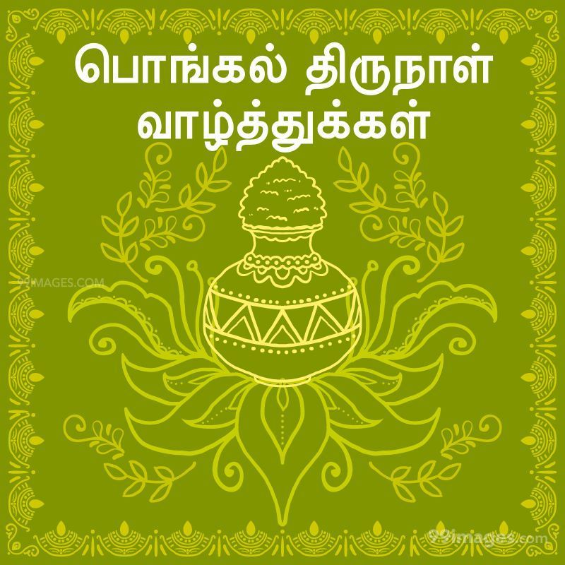 [15th January 2020] Happy Pongal (Pongal Vazhthukkal) in Tamil, WhatsApp DP Images, Wishes, Quotes, Messages HD (282294) - Pongal