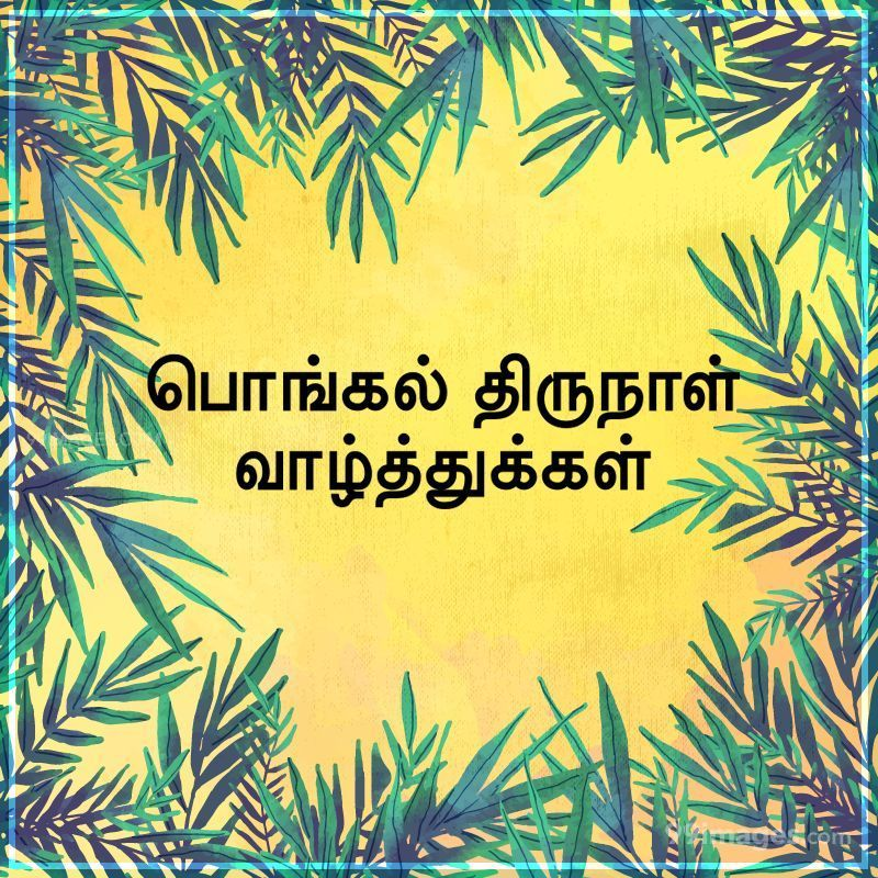 [14th January 2021] Happy Pongal (Pongal Vazhthukkal) in Tamil, WhatsApp DP Images, Wishes, Quotes, Messages HD (282372) - Pongal
