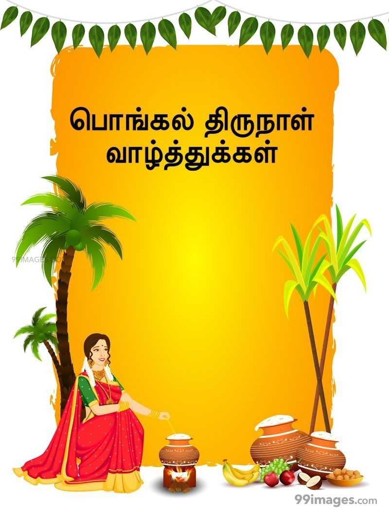 [14th January 2021] Happy Pongal (Pongal Vazhthukkal) in Tamil, WhatsApp DP Images, Wishes, Quotes, Messages HD (283393) - Pongal