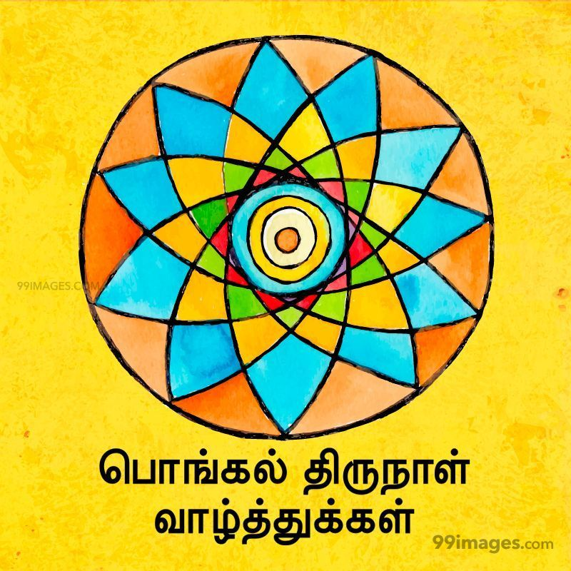 [14th January 2021] Happy Pongal (Pongal Vazhthukkal) in Tamil, WhatsApp DP Images, Wishes, Quotes, Messages HD (282323) - Pongal