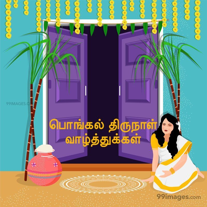 [14th January 2021] Happy Pongal (Pongal Vazhthukkal) in Tamil, WhatsApp DP Images, Wishes, Quotes, Messages HD (283381) - Pongal